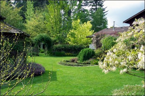 My Country Garden